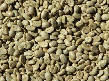 グリーンコーヒーって知ってる?効果や問題点を解説